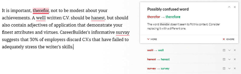 angol önéletrajz írása - grammarly használata hibák javítására