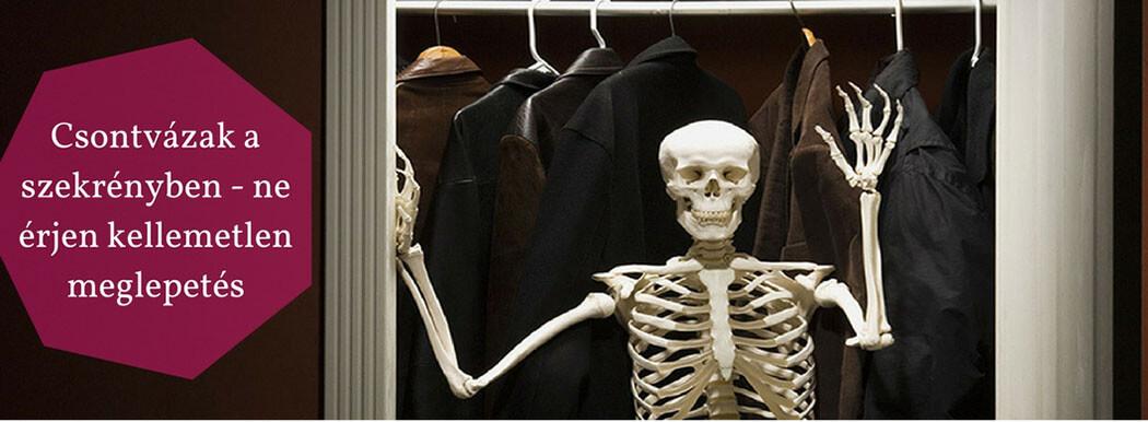 2. Állásinterjú tipp Csontvázak a szekrényben - Skeletons in the Closet